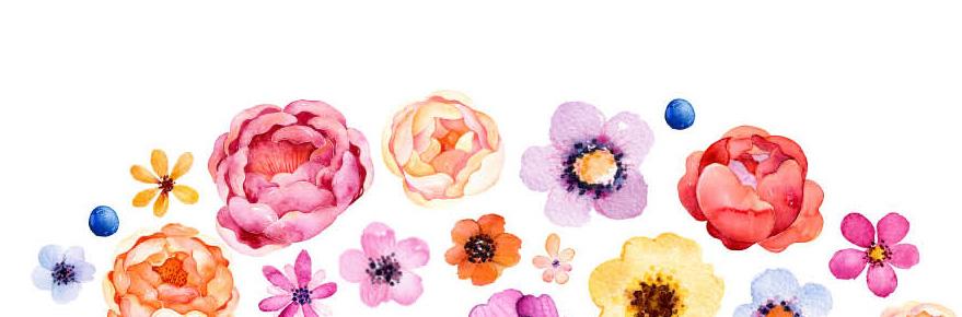 http://www.reseau-amap-hn.org/content/posts/images/2017-05-05_graines-de-jardin-couverture.jpg